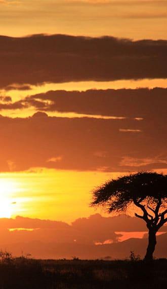 evao-voyages-afrique-du-sud