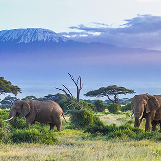 destination-Tanzanie-evao