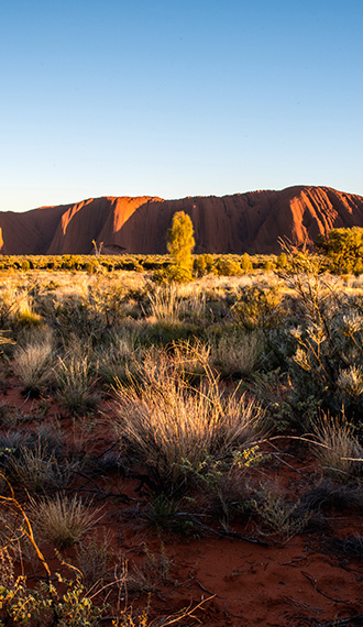 evao-voyages-australie-ayers-rock-4